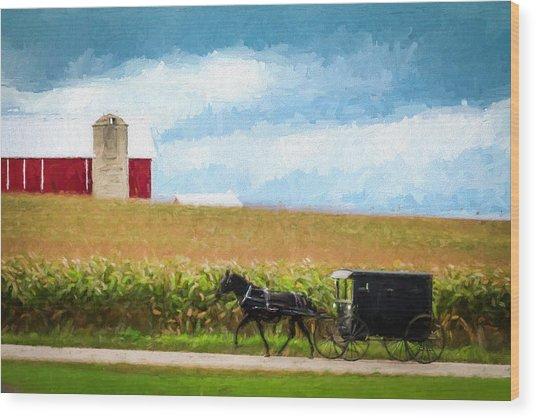 Amish Paradise Wood Print