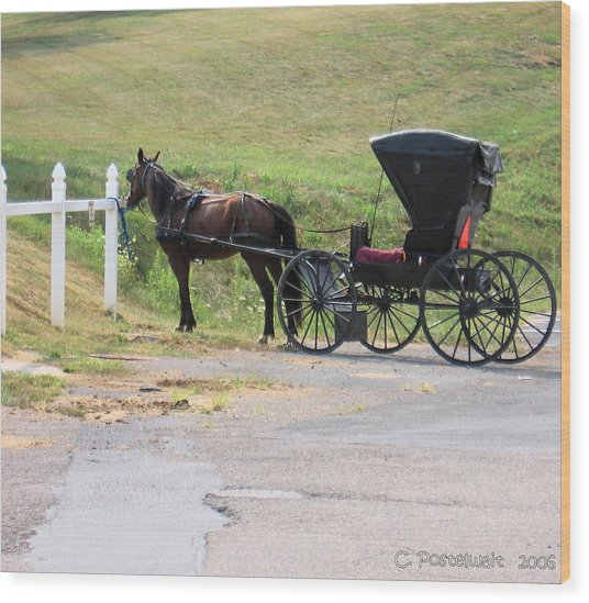 Amish Transportation Wood Print