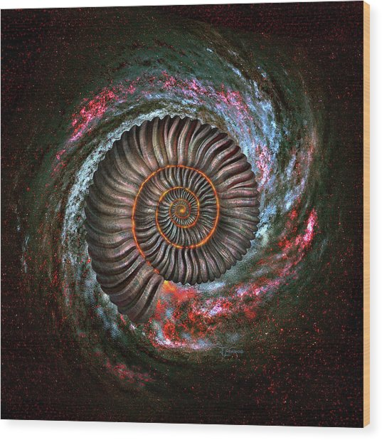Ammonite Galaxy Wood Print