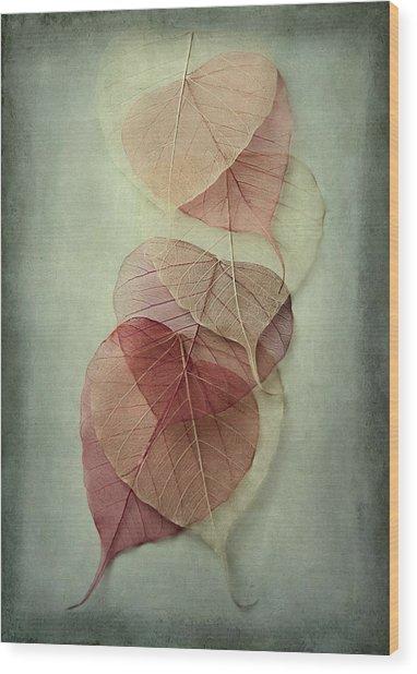 Among Shades Wood Print