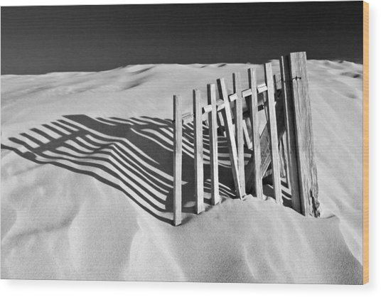 Amoreira Shadows Wood Print