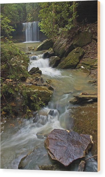 Amos Falls Kentucky Wood Print