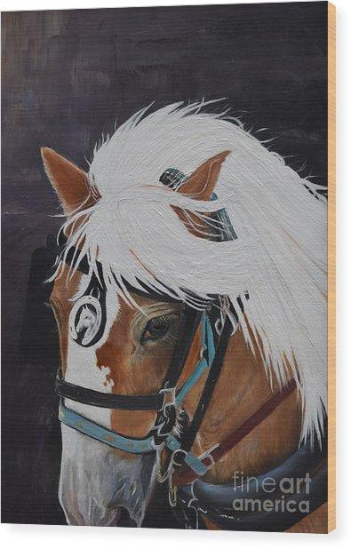 Amos - Haflinger - Horse Wood Print