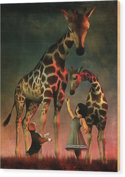 Amy And Buddy With The Giraffes Wood Print