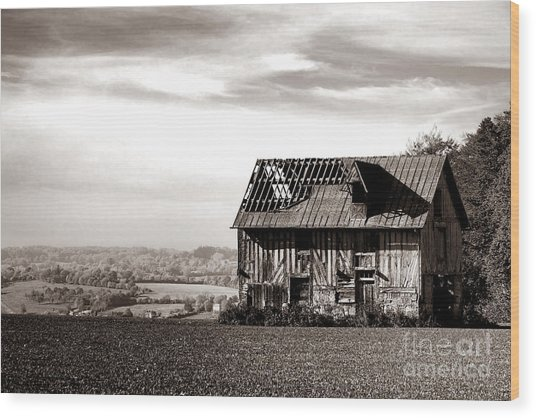 An Abandoned Farmhouse In Normandy Wood Print