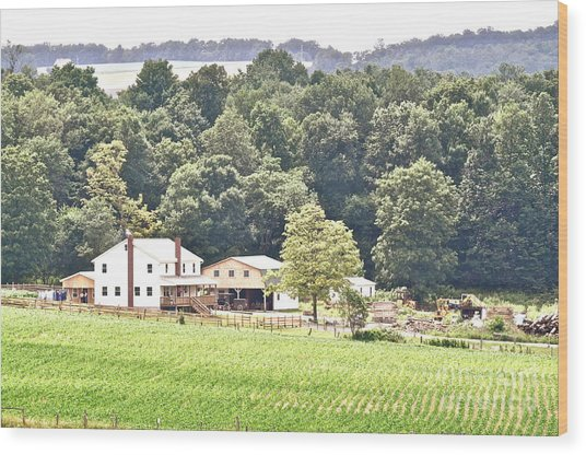 An Amish Farm Wood Print by Penny Neimiller