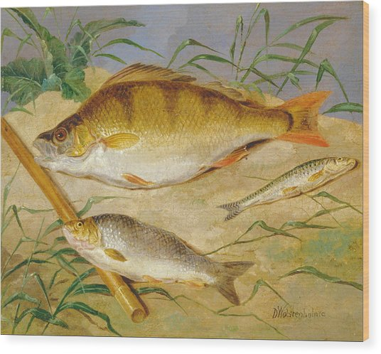 An Anglers Catch Of Coarse Fish Ca. 1850 Wood Print