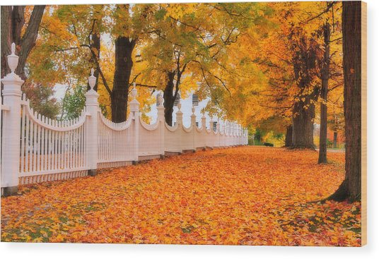 An Autumn Stroll - West Bennington Vermont Wood Print by Expressive Landscapes Fine Art Photography by Thom