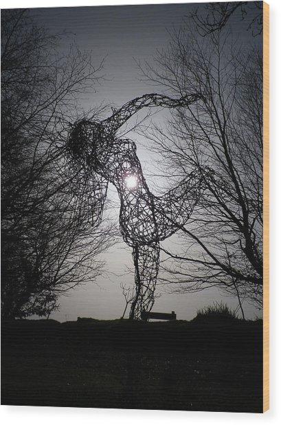 An Eclipse Of The Heart? Wood Print