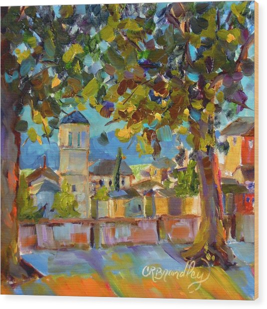 An Evening In Assisi Wood Print