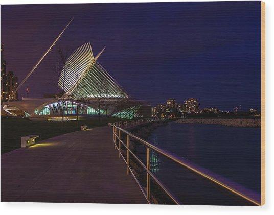An Evening Stroll At The Calatrava Wood Print