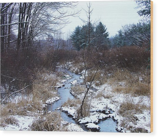 An Intimate Motif In Palenville Wood Print by Terrance DePietro
