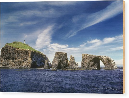 Channel Islands National Park - Anacapa Island Wood Print