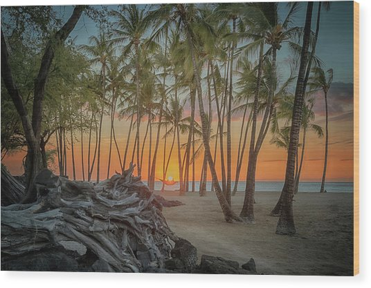 Anaehoomalu Beach Sunset Wood Print