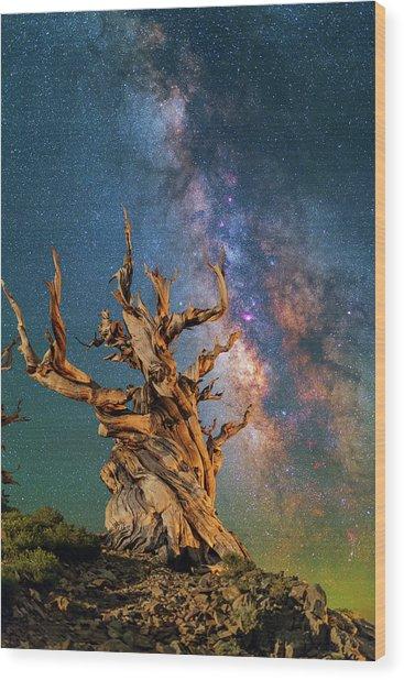 Ancient Beauty Wood Print