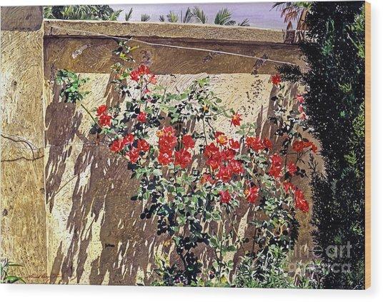 Ancient Roses Wood Print by David Lloyd Glover