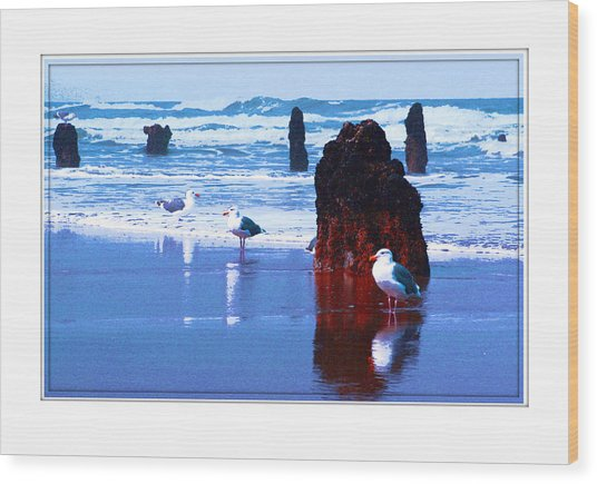 Ancient Trees And Seagulls At Neskowin Beach Wood Print by Margaret Hood
