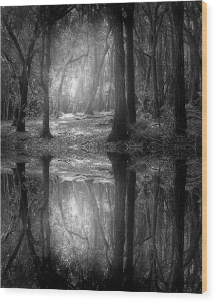 And There Is Light In This Dark Forest Wood Print