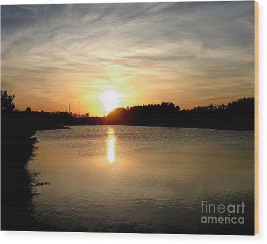Anderson Stormwater Park In Rockledge Florida Wood Print