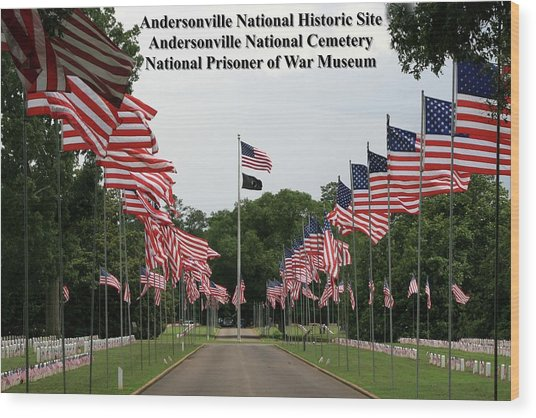 Andersonville National Park Wood Print