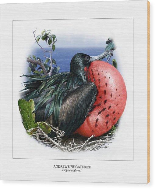 Andrews Frigatebird Fregata Andrewsi 3 Wood Print by Owen Bell