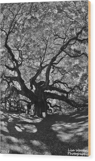 Angel Oak Johns Island Black And White Wood Print