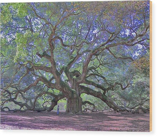 Angel Oak, John's Island, Sc Wood Print by Garry Turpin