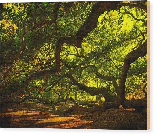 Angel Oak Limbs 2 Wood Print