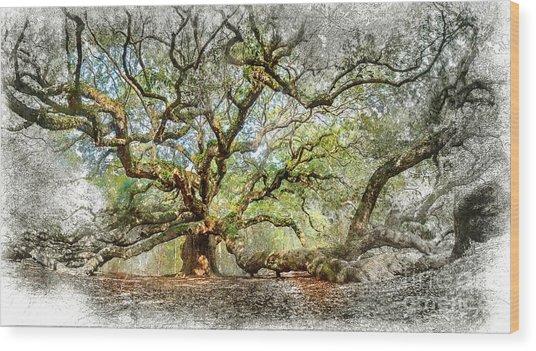Angel Oak Mixed Media Wood Print