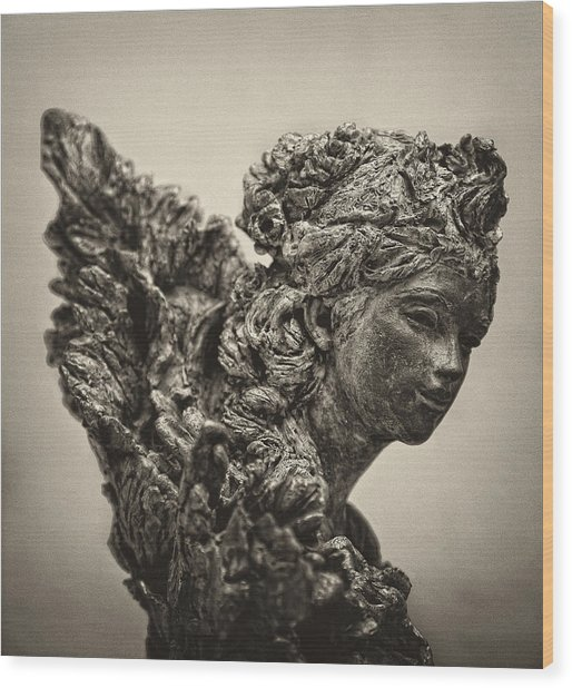 Angel Statue Wood Print by Robert Ullmann