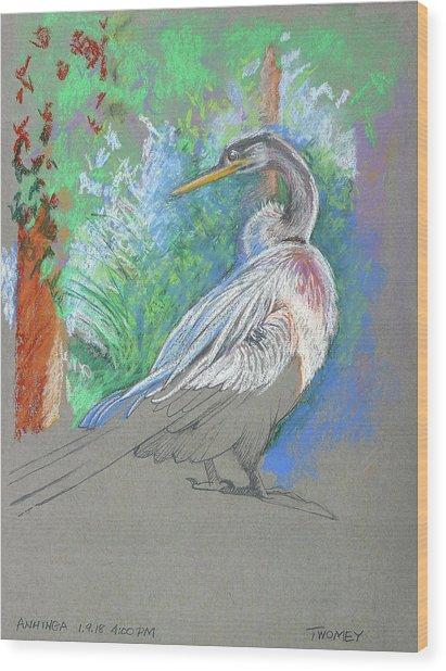 Anhinga Sarasota Plein Air Wood Print