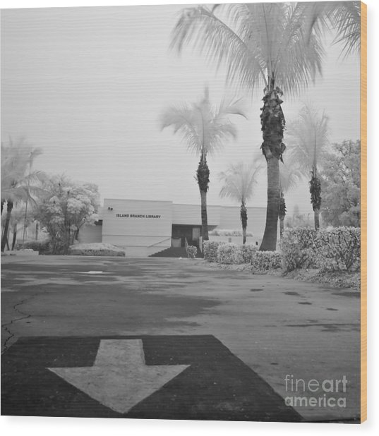 Anna Maria Island Branch Library In Fog Infrared 50 Wood Print by Rolf Bertram
