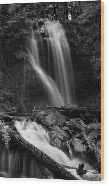Anna Ruby Falls In Black And White Wood Print