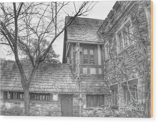 Annex At Ringwood Manor With Tree Wood Print