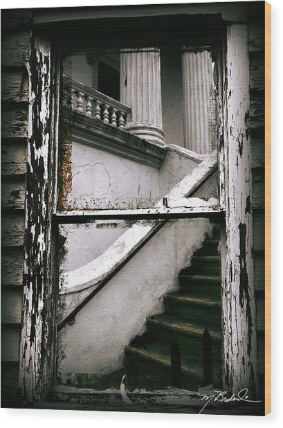 Another Look At Charleston  Wood Print by Melissa Wyatt
