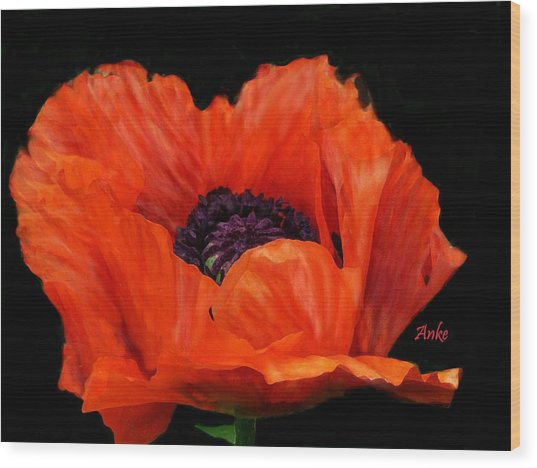 Another Red Poppy Wood Print by Anke Wheeler