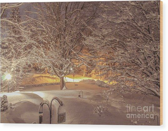 Another Snow Storm 1 Wood Print