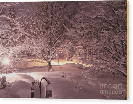 Another Snow Storm Wood Print
