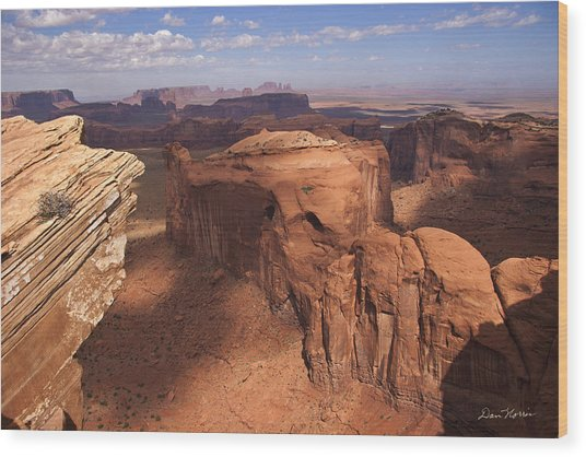 Another View From Hunt's Mesa Wood Print