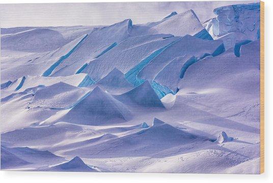 Antarctic Landscapes  Wood Print
