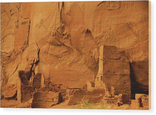 Antelope House Wood Print