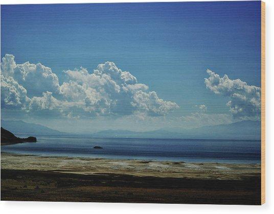 Antelope Island, Utah Wood Print