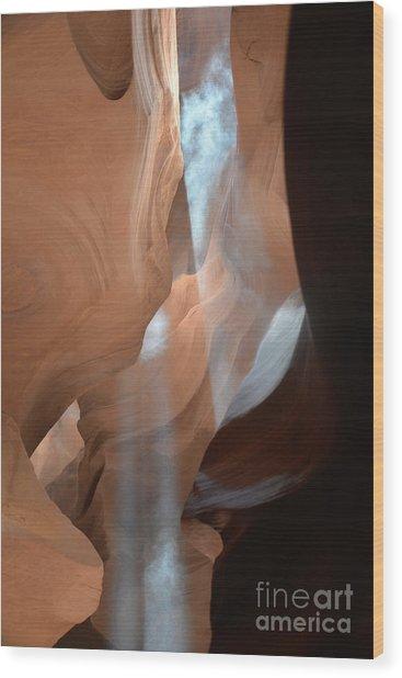 Antelope One Wood Print