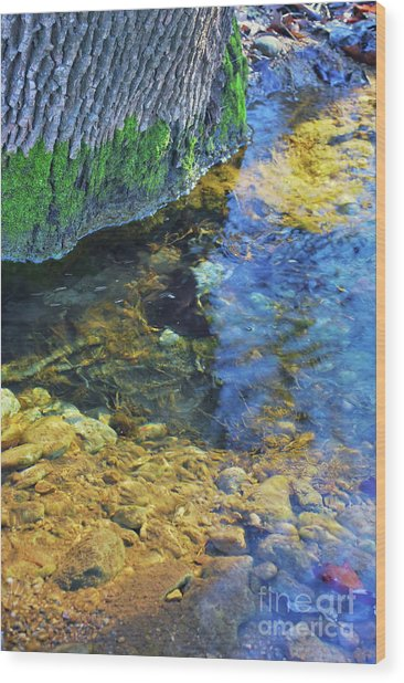 Antelope Springs Vii Wood Print by Ron Cline