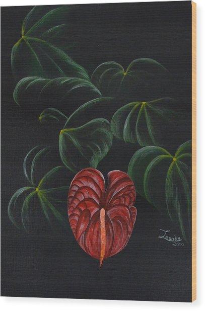 Anthurium Wood Print by Roberta Landers