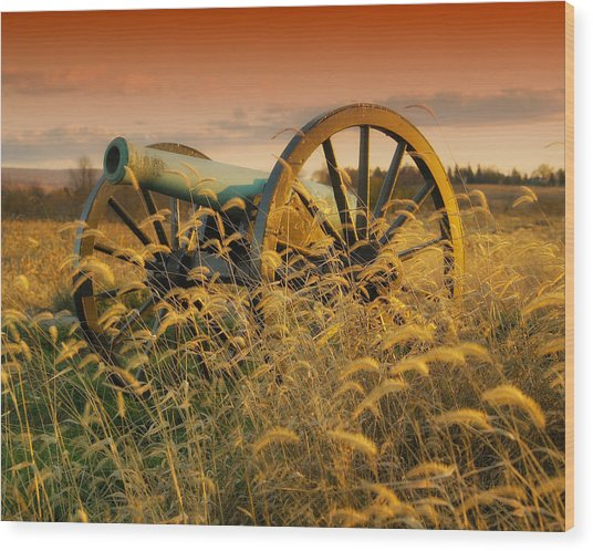 Antietam Battleground At Dusk Wood Print