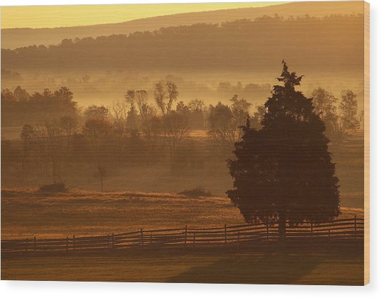 Antietam National Battlefield At Sunrise Wood Print