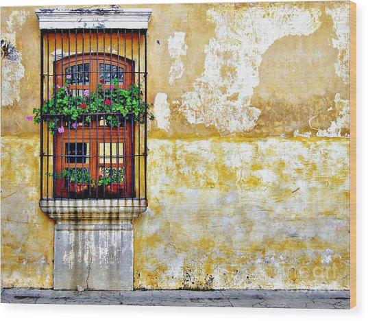 Antigua Window Wood Print