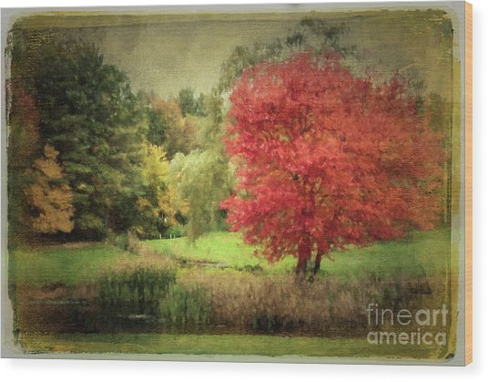 Antique Autumn Wood Print
