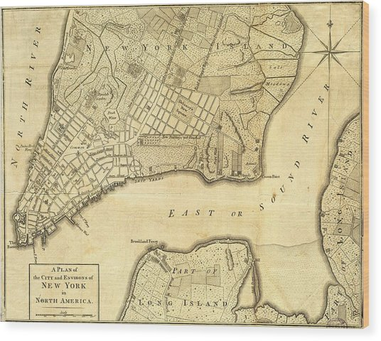 Antique Maps - Old Cartographic Maps - City Of New York And Its Environs Wood Print